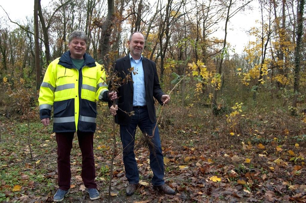 Wolfgang Lenhart (rechts), Bereichsleiter Technik bei den Stadtwerken Neuss, und Projektleiter Dieter Radermacher begutachten die Aufforstungsarbeiten