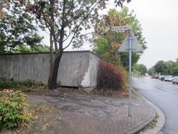 Baumfällungen: Spitzahorn, Donaustraße
