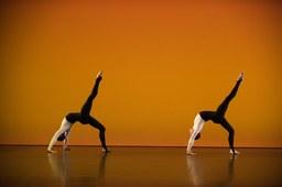 Internationale Tanzwochen 1.jpg