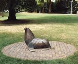 Seehund, Stadtgarten