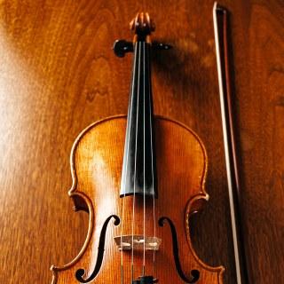 Schwerpunkt Streichinstrumente