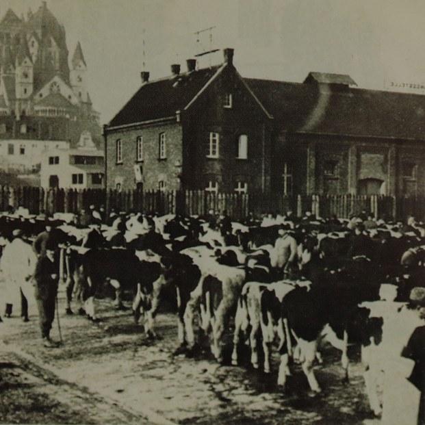 Viehmarkt am Hessentor